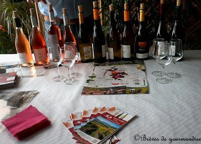 Les blogueuses auvergnates à la découvertes des vignobles Saint-Verny