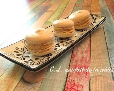 Mes macarons Dulcey tonka