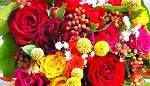 Fleur Pots Venelles