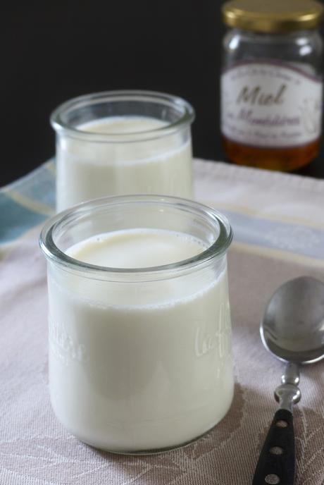 Yaourts sans yaourtière