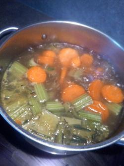 veloute de cardons carottes