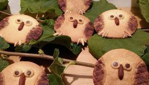 Biscuits sablés Chouette Jackie