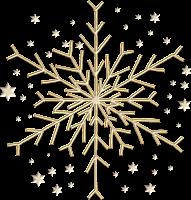 La Bûche de Noël par Fauchon