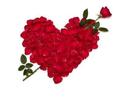 Menu Saint Valentin à La Table Cinq