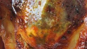 Poulet rôti miel libanaise