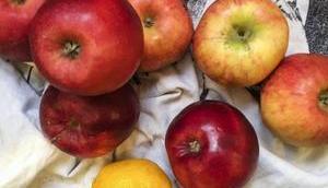 vrai luxe Compote pommes yuzu frais