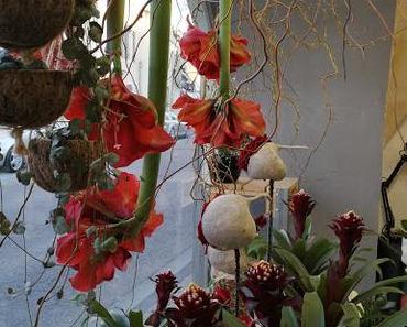 Made in Fleur - 13 520 Maussane les Alpilles